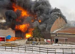 Einladung zum Lehrgang Brandschutzhelfer im Pferdebetrieb