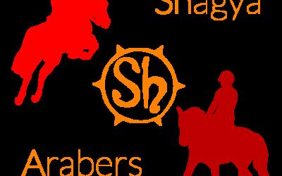 SHAGYA-ARABER EQUI-LEAGUE CHALLENGE